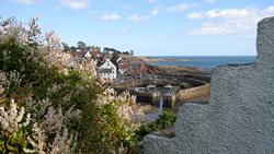 Crail Harbour from the Fife Coastal Path