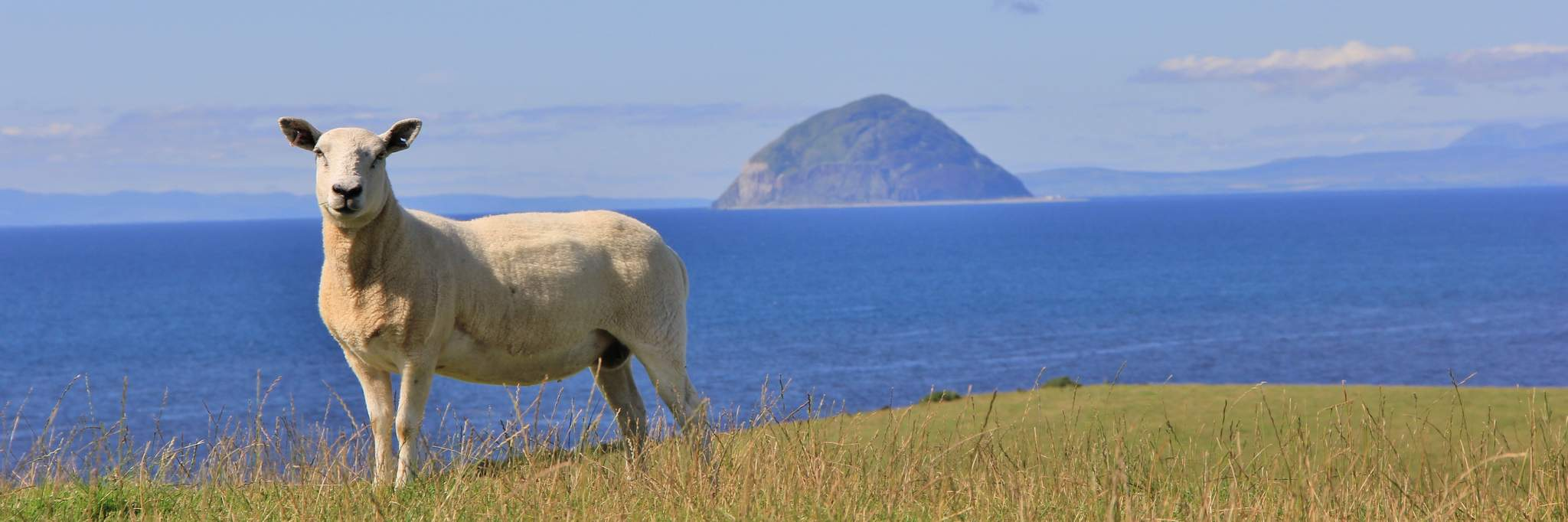 Discover Ayrshire and Arran