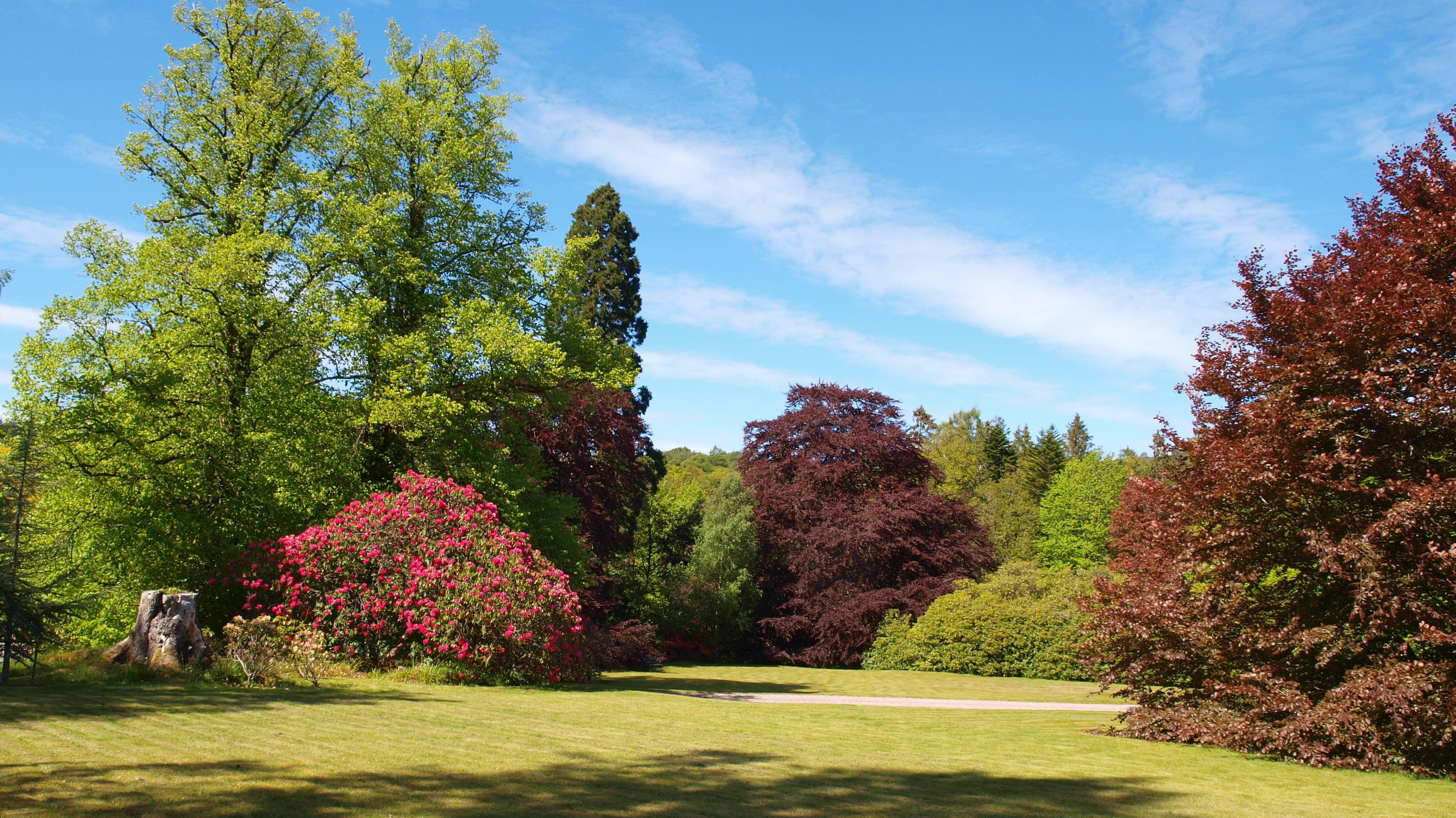 garden at Spean Lodge B&B