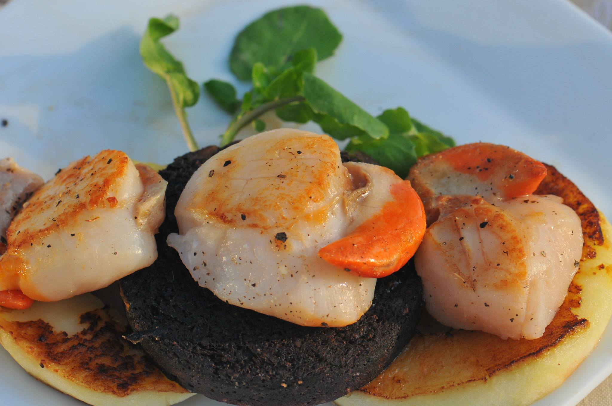 Scallops & Black Pudding prepared by Home Farm B&B, Muir of Ord