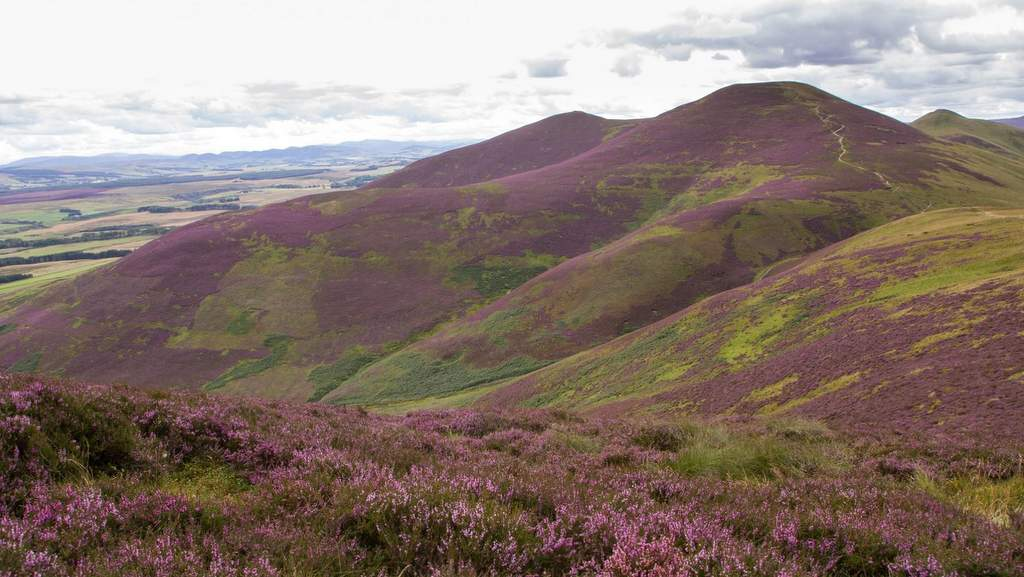 Pentland Hills near Arden County House