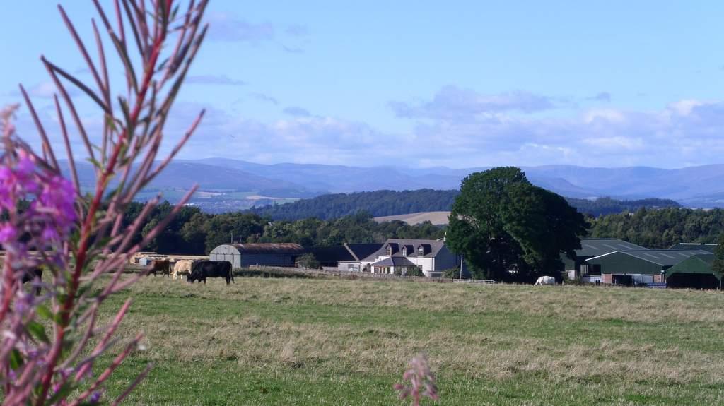 Newton Farm B&B near Forfar