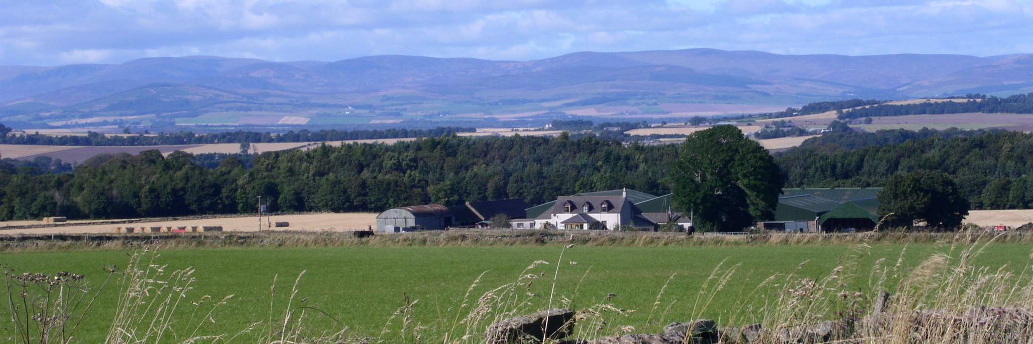 Newton Farm Holidays near Forfar