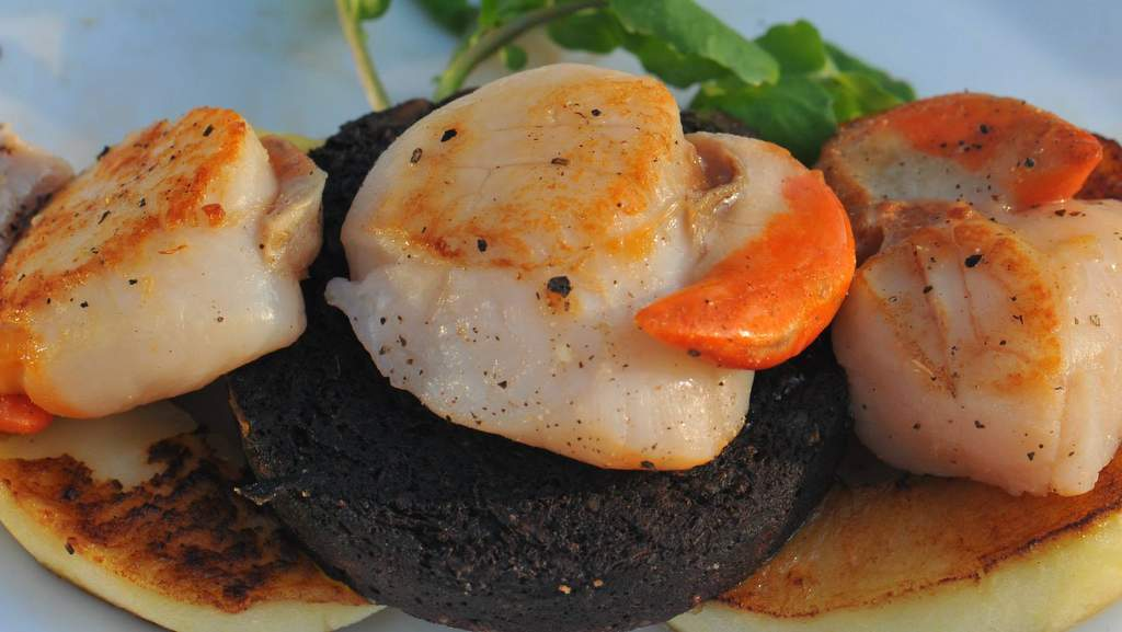 Scallops and Black Pudding served at Home Farm B&B, Muir of Ord