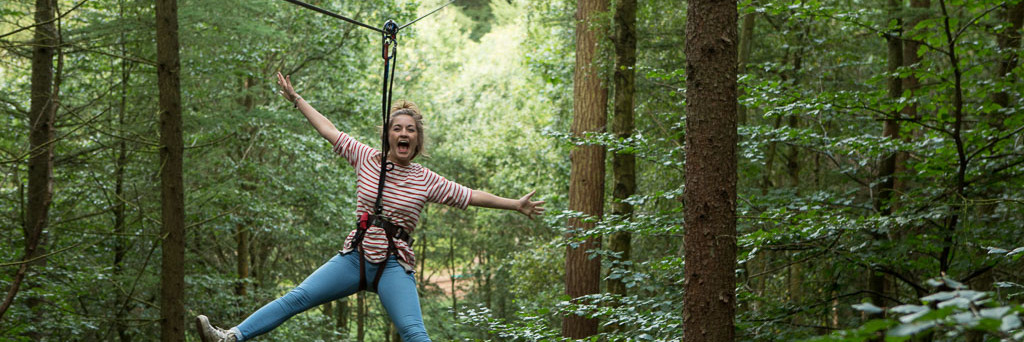 Go Ape!  Tree Top Adventure
