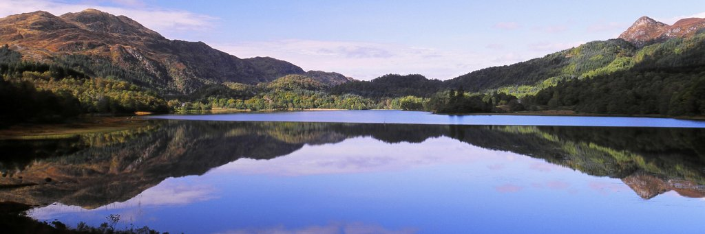 The Great Trossachs Forest