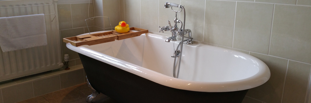 Westcot Guest House- bathroom with duck