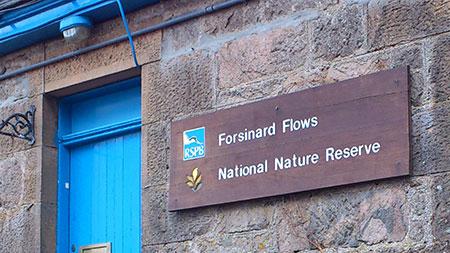 Forsinard RSPB Centre