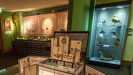 Caithness Horizons Museum