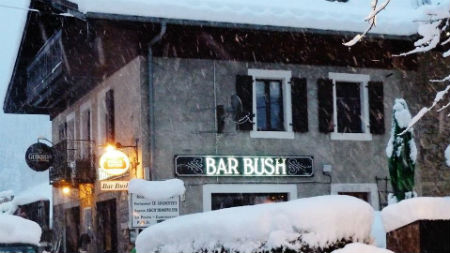 Bar Bush