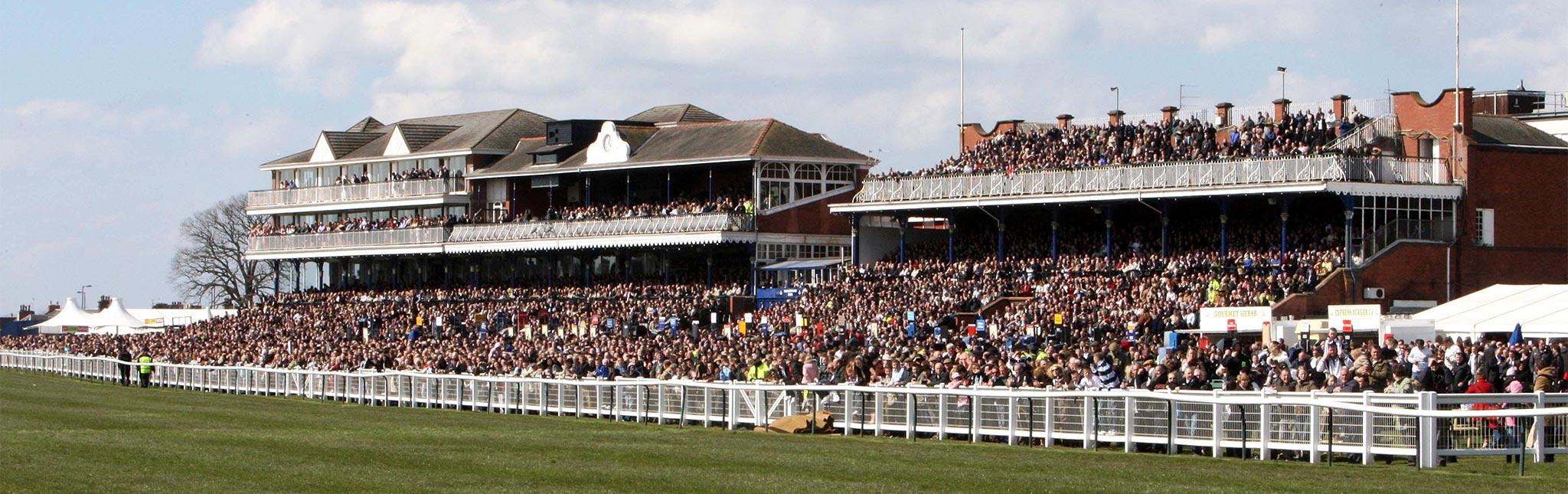 AYRSHIRE_ayr_racecourse.jpg
